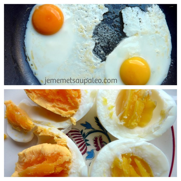 Voyez-vous la différence entre la couleur du jaune d'oeuf de poules en liberté comparé à celui de poules en cage?